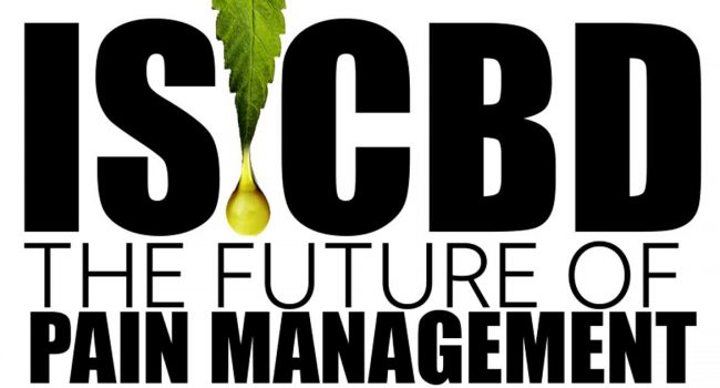 CBD Pain Management